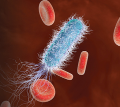 Is a solution for sepsis in sight?